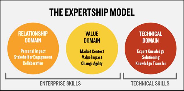 Enterprise skills model