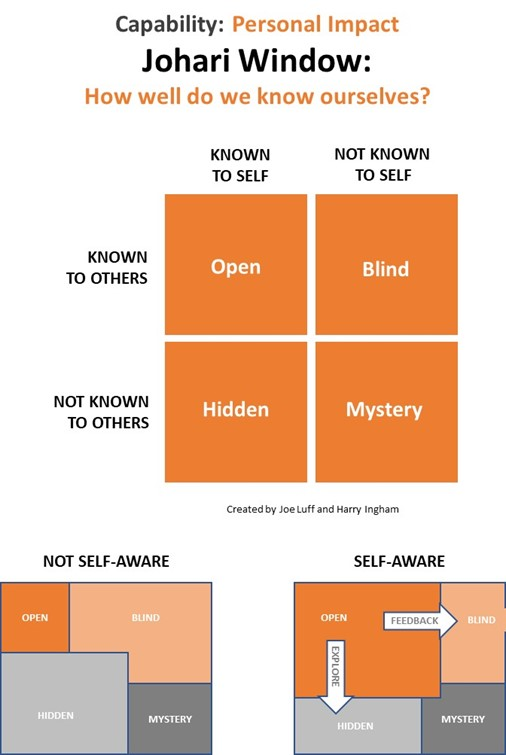 Figure 4-4  Johari Window – how well do we know ourselves?
